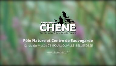 Association CHENE : un lien entre l'homme et la nature